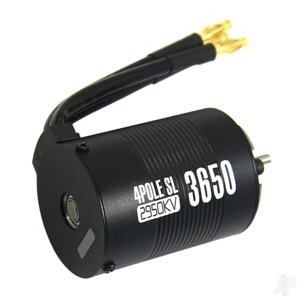 ZTW410602003-2.jpg