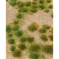 Wild Grassland, 5x7in, Sheet