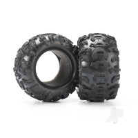 Tires, Canyon AT 2.2in (2pcs) / foam inserts (2pcs)