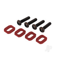 Motor Mounting Bolts and Washers (4 pcs)