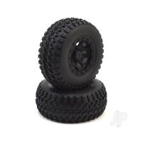 Wheel Set (2pcs) (Karoo)