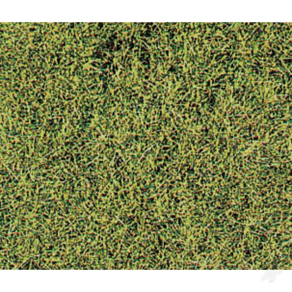 1574 Wild Grass Savanna