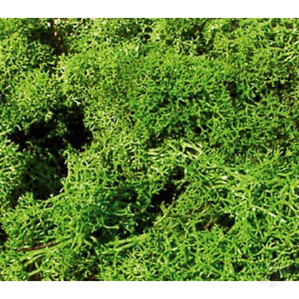 3210 Standard Lichen Light Green