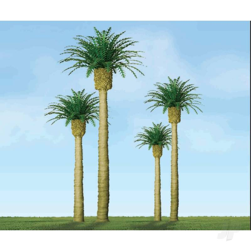 Phoenix Palm, 3in, (3 per pack)